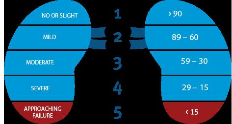 Kidney Failure Risk Equation Calculator